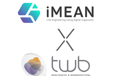 iMEAN strengthens its partnership with TWB