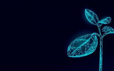 Webinar Digital Crop & Biocontrol