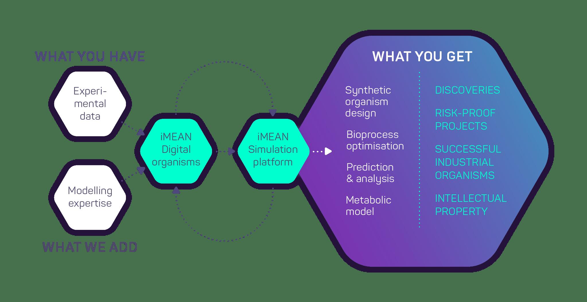 iMEAN biotech workflow
